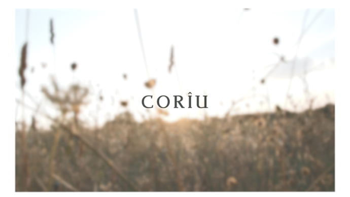 CORIU,bag
